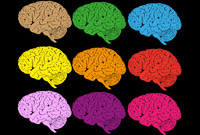 http://blogs.scientificamerican.com/beautiful-minds/2013/08/19/the-real-neuroscience-of-creativity/